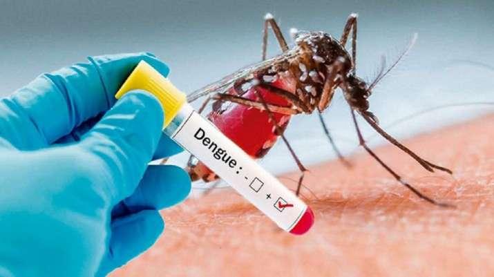 """Dengue """"EMPOWER IAS"""""""
